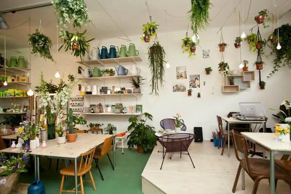 Wildernis: de leukste plantenwinkel
